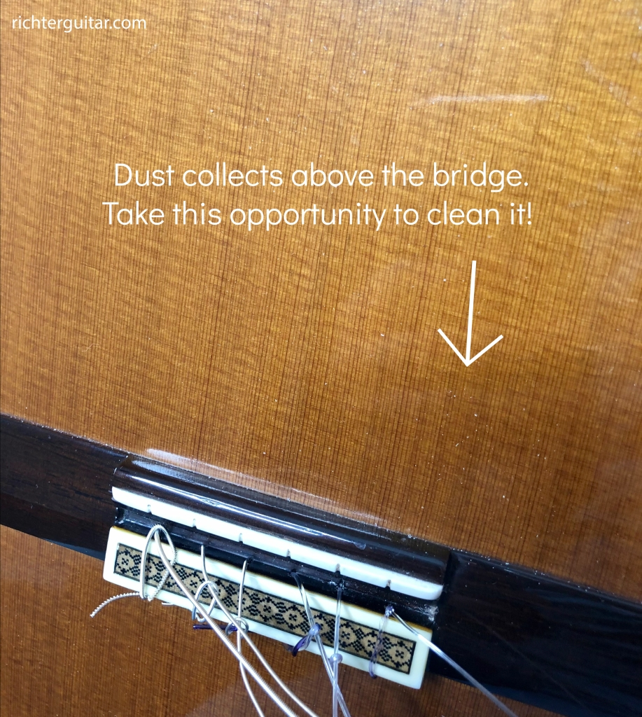 Example of dust collecting above the bridge of the guitar